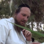 «Simplicité dans le Service Divin» – ISRAEL SABA