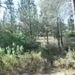 «Hitbodédouth 1» – AARON A LA PAROLE