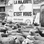 BILLET D'HUMEUR – «Faut-il suivre la majorité ?»