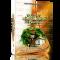 » Kitvé Rabbi Na'hman de Breslev II » – Torah et Téfila de 71 à 286 – 26 Shekel – LES LIVRES DE RABBI NA'HMAN