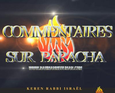 PARACHA DE LA SEMAINE – Selon Rabbi Na'hman de Breslev