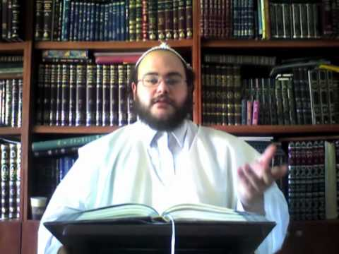 HISTOIRES DES TSADIKIM – «LES ÉLÈVES DE RABBI NATHAN DE BRESLEV» – «Rabbi Na'hman de Toulchin»